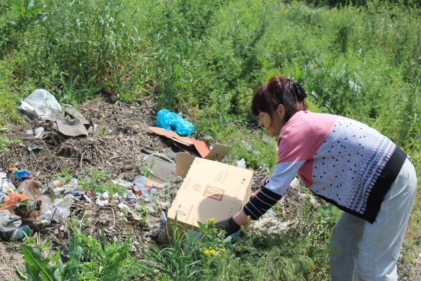 Стихийные свалки в Доброполье: ответственность местной власти или жителей города? (фото) - фото 1