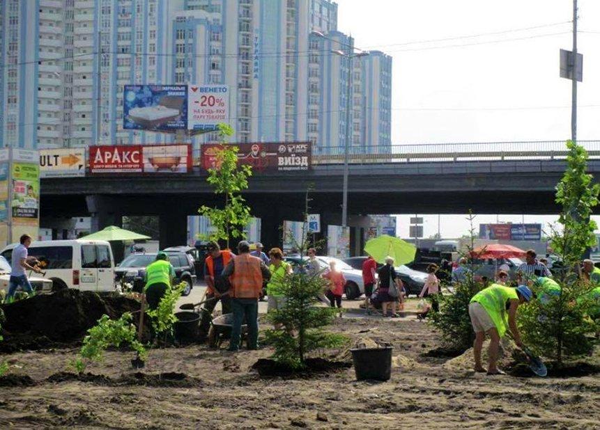 КГГА посадила деревья на месте скандальной застройки на Осокорках (ФОТО), фото-1