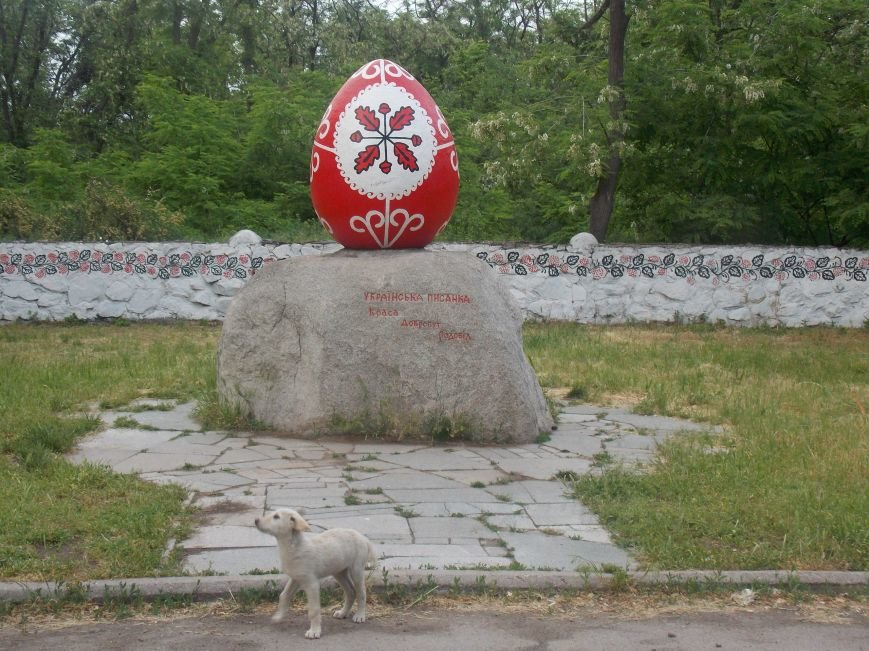 Запорожскому дендропарку дали «вторую жизнь» (ФОТОРЕПОРТАЖ) (фото) - фото 5