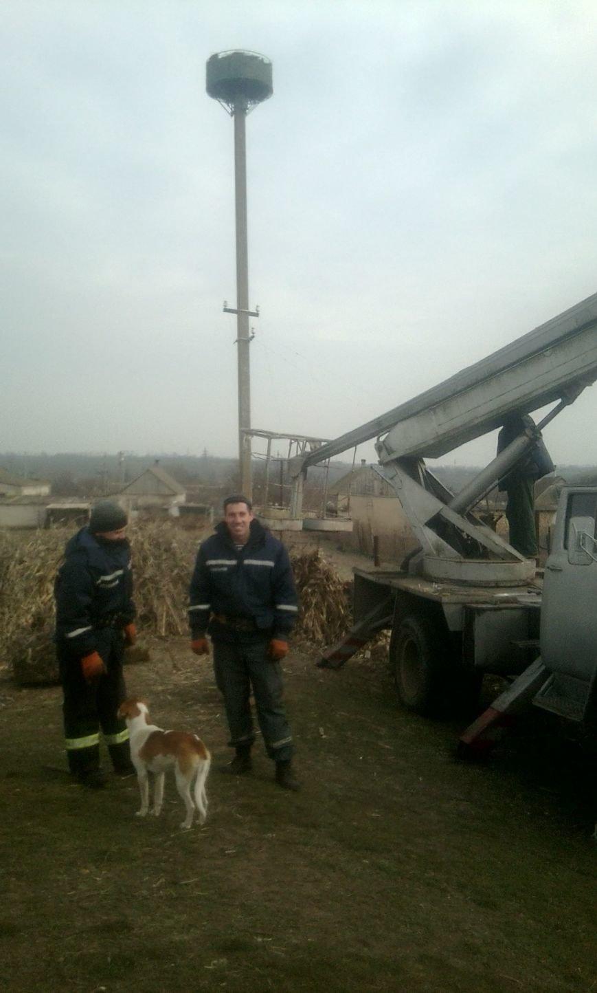 Спасатели Херсонщины восстанавливают гнезда аистов (фото) - фото 1