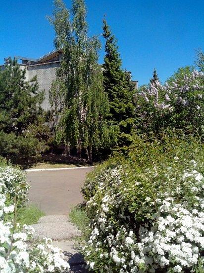 Авдеевский коксохим направил почти 4 миллиона гривен на оздоровление своих заводчан (ФОТО), фото-1