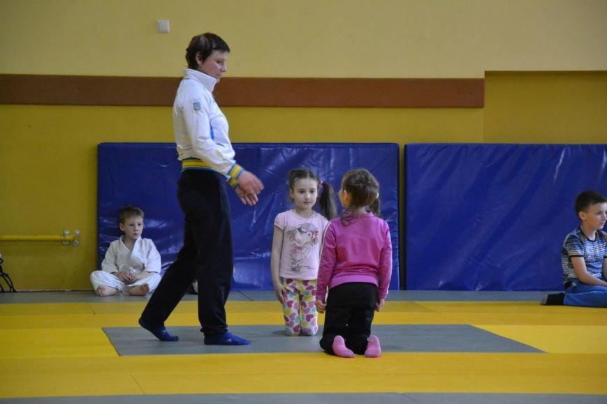 У Хмельницькому відбулись кваліфікаційні змагання для маленьких дзюдоїстів (фото) - фото 7