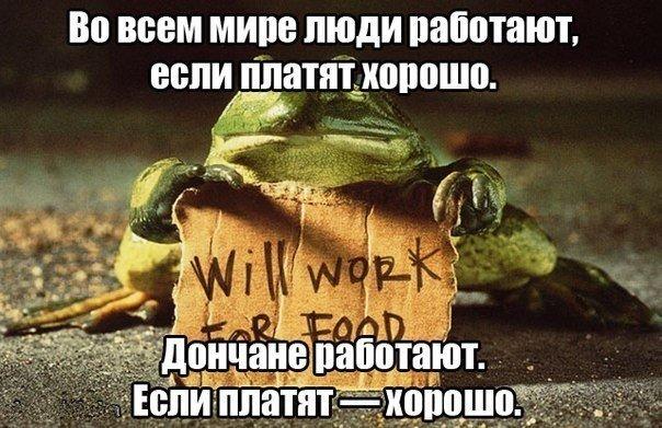 «Real Cola», гром - не гром и хорошо работать, если есть зарплата, - над чем смеялись макеевчане на этой неделе (фото) - фото 6
