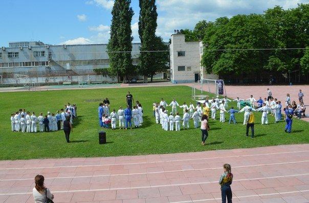 В Кременчуге состоялся фестиваль дзюдо «Kremin Cup-2015» (ФОТО) (фото) - фото 1
