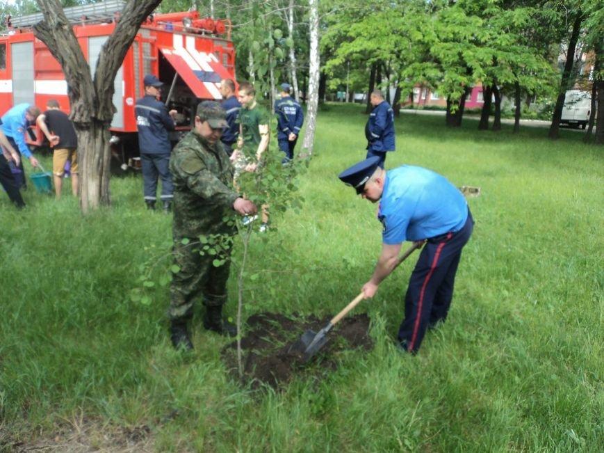 В Красноармейске появилась «Аллея дружбы», фото-3