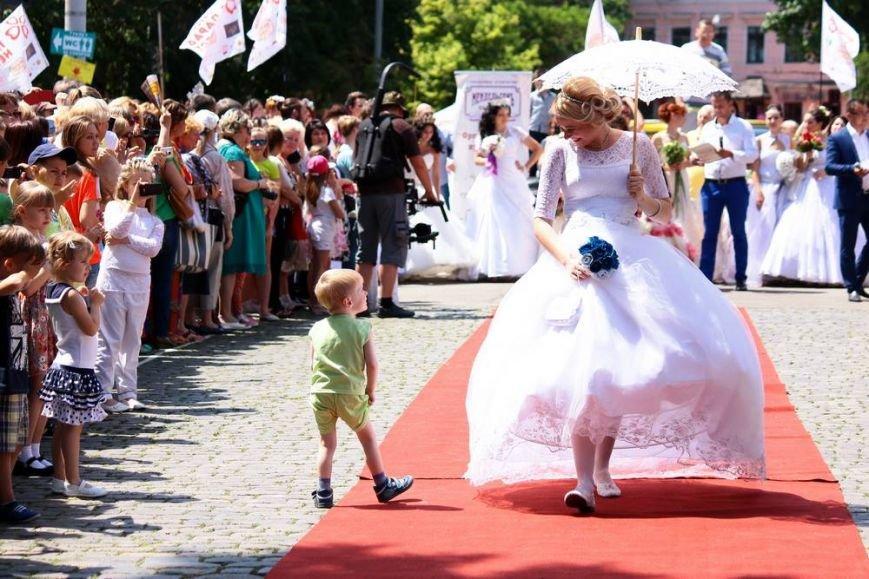 В центре Одессы 50 невест разрезали свадебные торты (ФОТОРЕПОРТАЖ) (фото) - фото 1