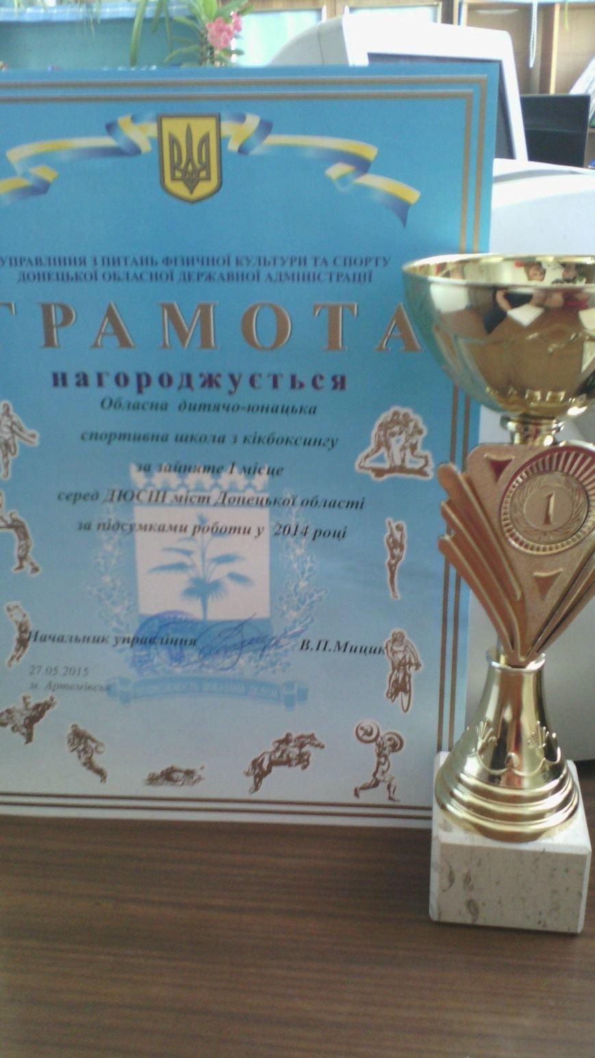 Итоговая коллегия наградила кикбоксеров Красноармейска, фото-1