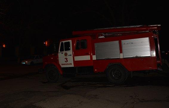 В  николаевском парке кинологи искали взрывчатку (ФОТО) (фото) - фото 1