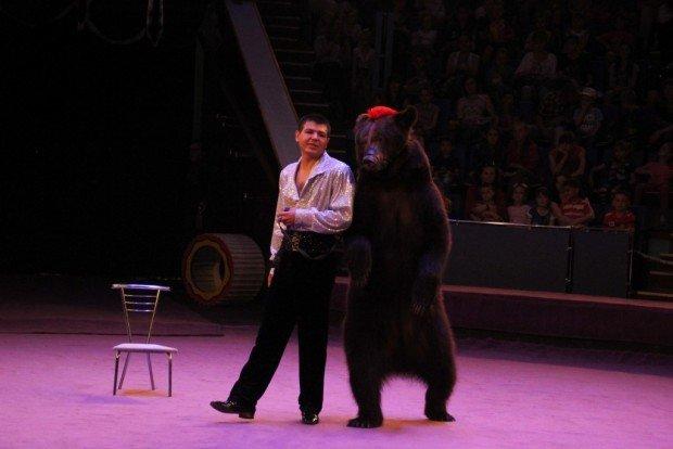 Понад 3 тис. дітей бійців, які зараз на передовій, безкоштовно відвідали львівський цирк (ФОТО), фото-2