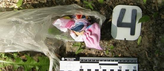 В Киеве под забором прохожий нашел пакет с патронами и взрывчаткой (ФОТО) (фото) - фото 1
