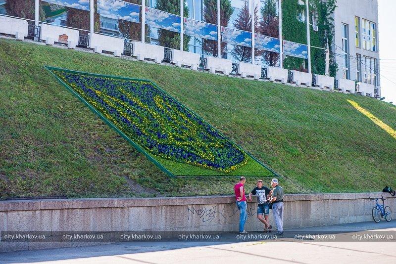 На Университетской горке высадили клумбу в форме трезубца (ФОТО) (фото) - фото 1