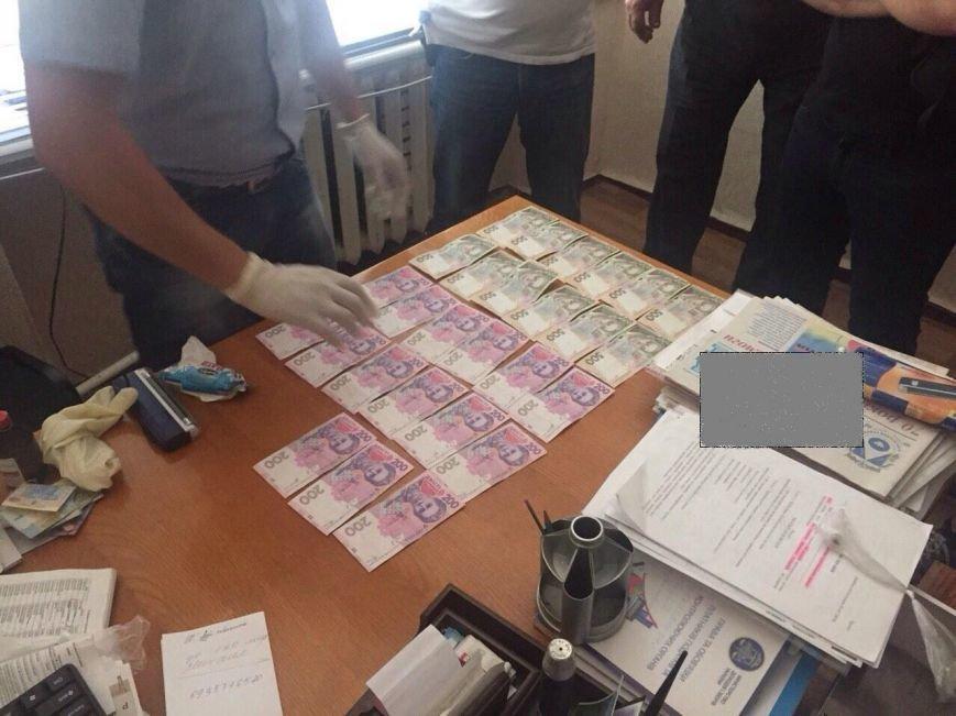 В Одесской области на фантастической взятке задержали председателя сельсовета (фото) - фото 1