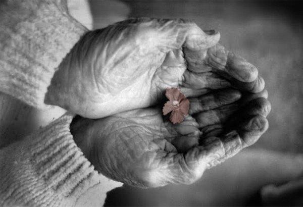 Лучанка відсвяткувала 101-річчя (фото) - фото 1