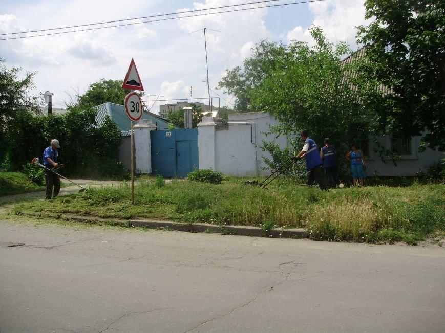 В  Николаеве коммунальщики борятся с травой (ФОТО) (фото) - фото 2
