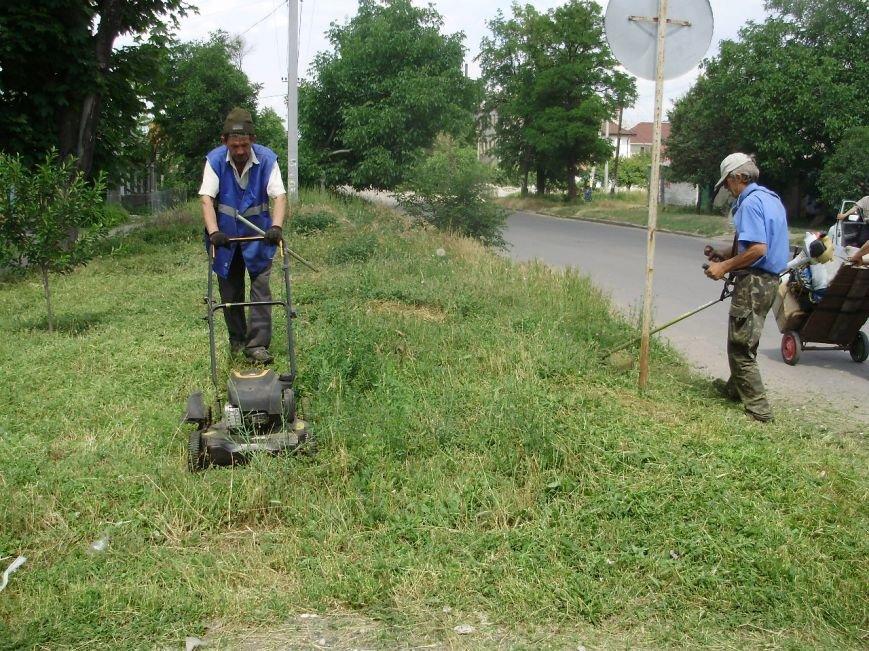 В  Николаеве коммунальщики борятся с травой (ФОТО) (фото) - фото 1