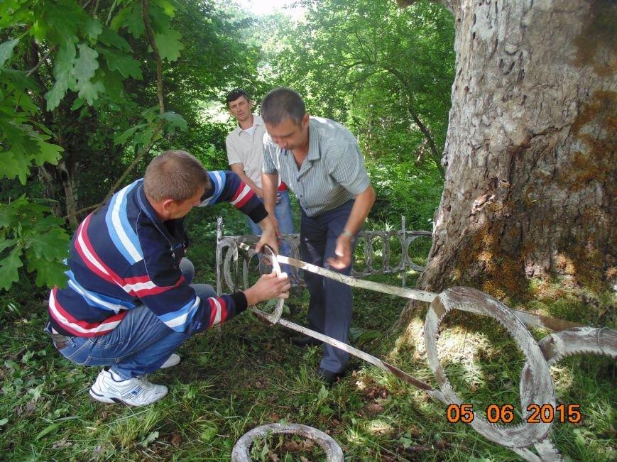 Экологи пытаются спасти памятник природы в хуторе Кубанском (фото) - фото 1