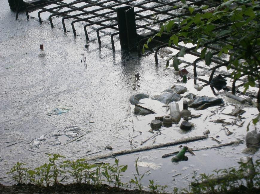 Природоохранная бездеятельность: в Димитровском пруду снова начала всплывать рыба (фото) - фото 3