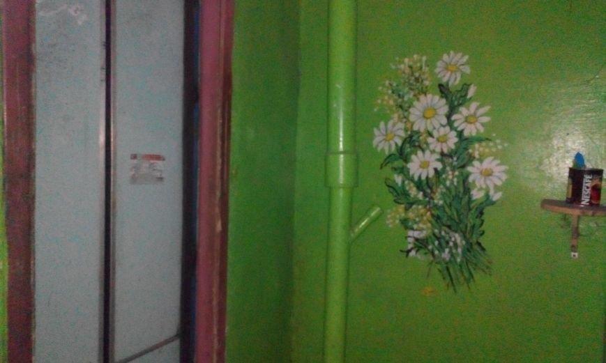 Запорожская пенсионерка превращает скучные гаражи в яркие полотна (ФОТО) (фото) - фото 4