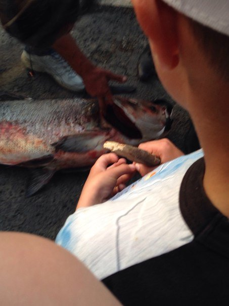 В Салгире начали ловить крупную рыбу и сплавляться по реке на матрасах (ФОТОФАКТ) (фото) - фото 2