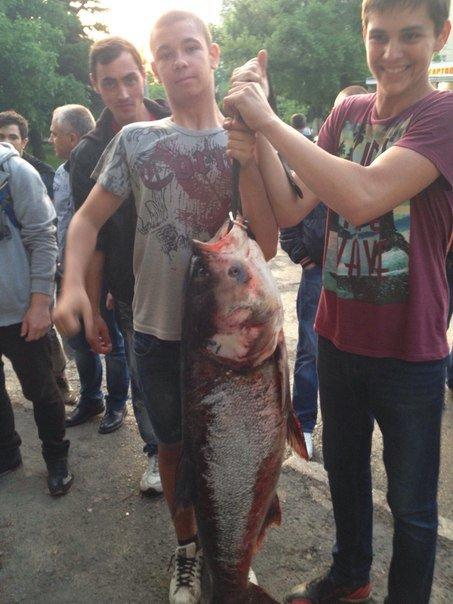 В Салгире начали ловить крупную рыбу и сплавляться по реке на матрасах (ФОТОФАКТ) (фото) - фото 4
