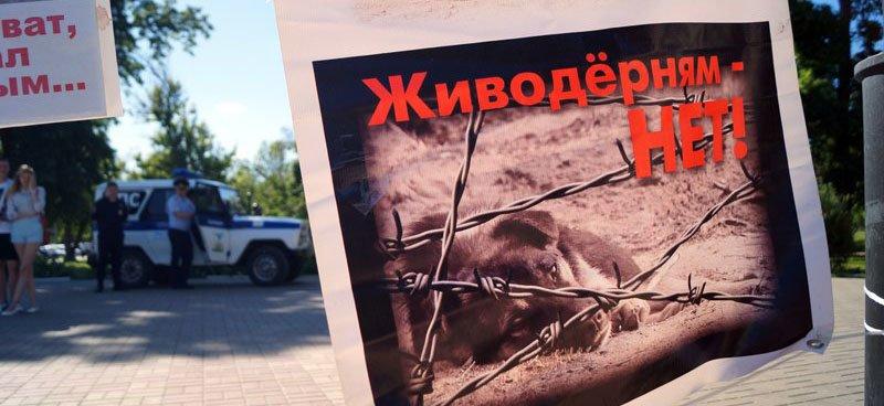 Бегущая неделя. Утечка мозгов из Белгорода, борьба коррупция и ожидания от волейбольной команды (фото) - фото 5