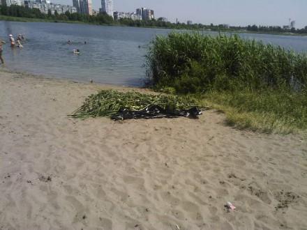 На столичном пляже обнаружили утопленника (ФОТО) (фото) - фото 1