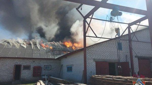 В Лиде произошел пожар на предприятии по изготовлению гробов и венков (фото) - фото 2