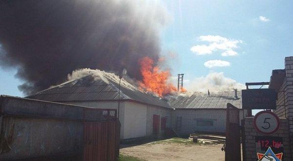 В Лиде произошел пожар на предприятии по изготовлению гробов и венков (фото) - фото 1