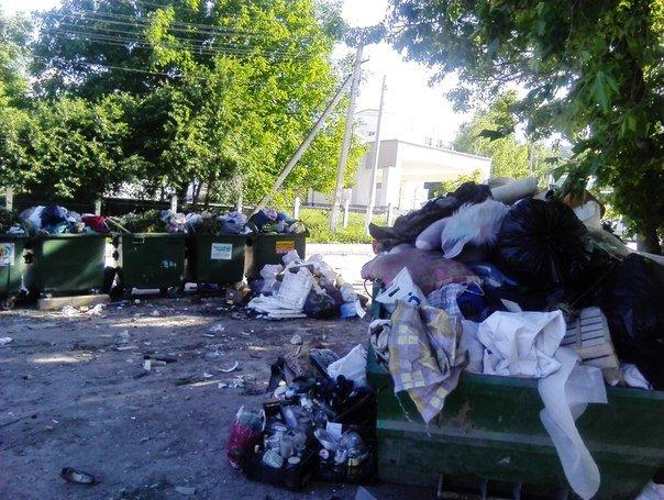 Власти Симферополя не могут определиться, где в городе ставить мусорные баки (ФОТО), фото-1