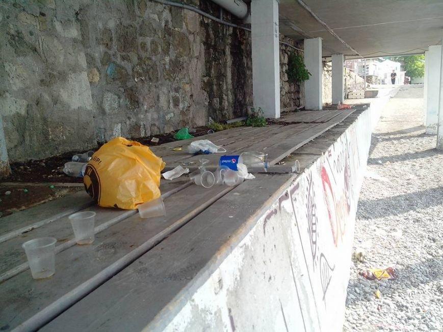 Крымские пляжи утопают в мусоре. Власти республики получают массу жалоб от жителей и гостей полуострова (ФОТО), фото-5