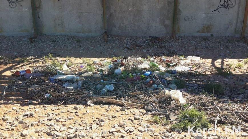 Крымские пляжи утопают в мусоре. Власти республики получают массу жалоб от жителей и гостей полуострова (ФОТО), фото-6