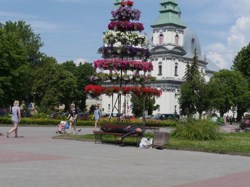 «Хто відповідає за життя безхатченків»: у Тернополі біля Катедри чоловік спав на лавочці (фотофакт) (фото) - фото 1