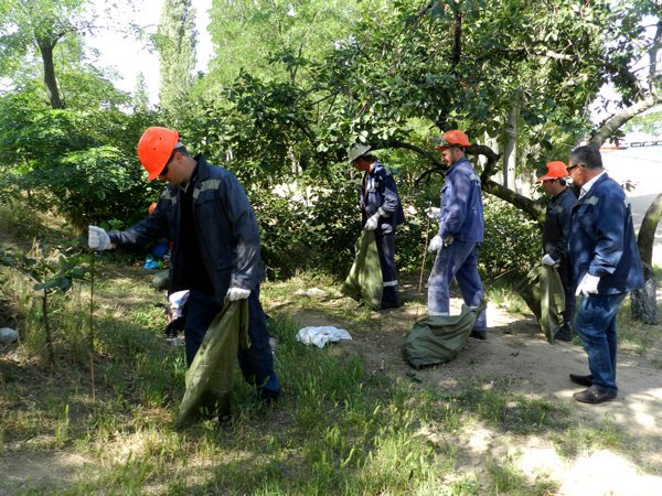 Николаевские рабочие взялись за бутылки, чтобы сделать мир чище (ФОТО) (фото) - фото 3