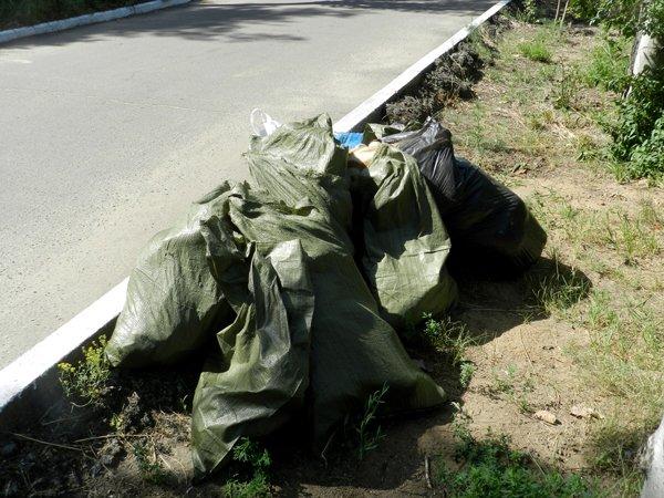Николаевские рабочие взялись за бутылки, чтобы сделать мир чище (ФОТО) (фото) - фото 2