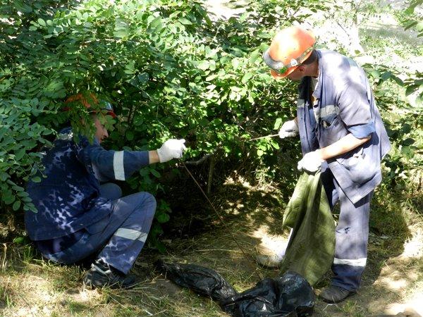 Николаевские рабочие взялись за бутылки, чтобы сделать мир чище (ФОТО) (фото) - фото 4