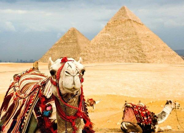 Егиепе