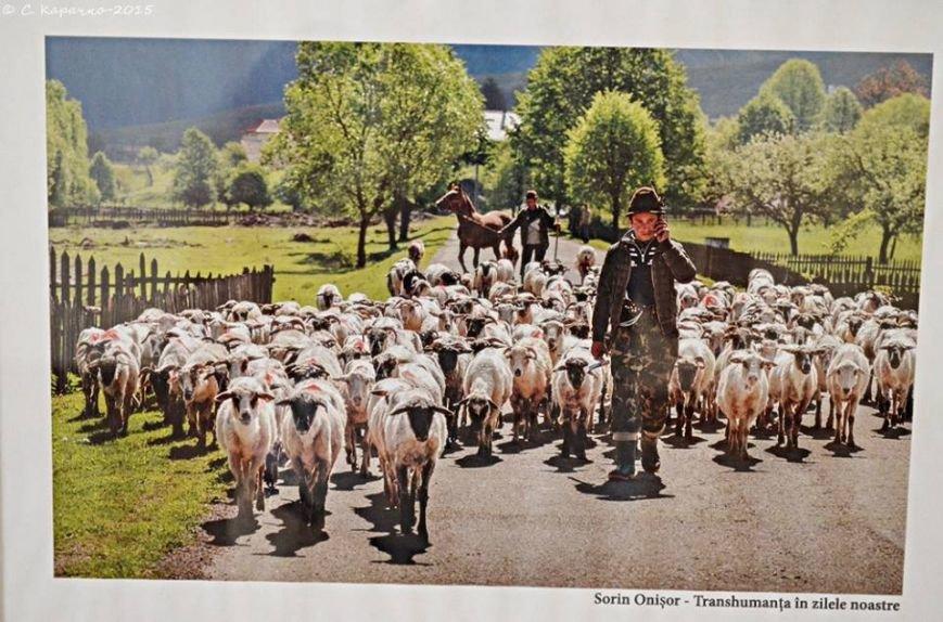У Чернівцях свої світлини презентувати румунські фотографи (ФОТО) (фото) - фото 1