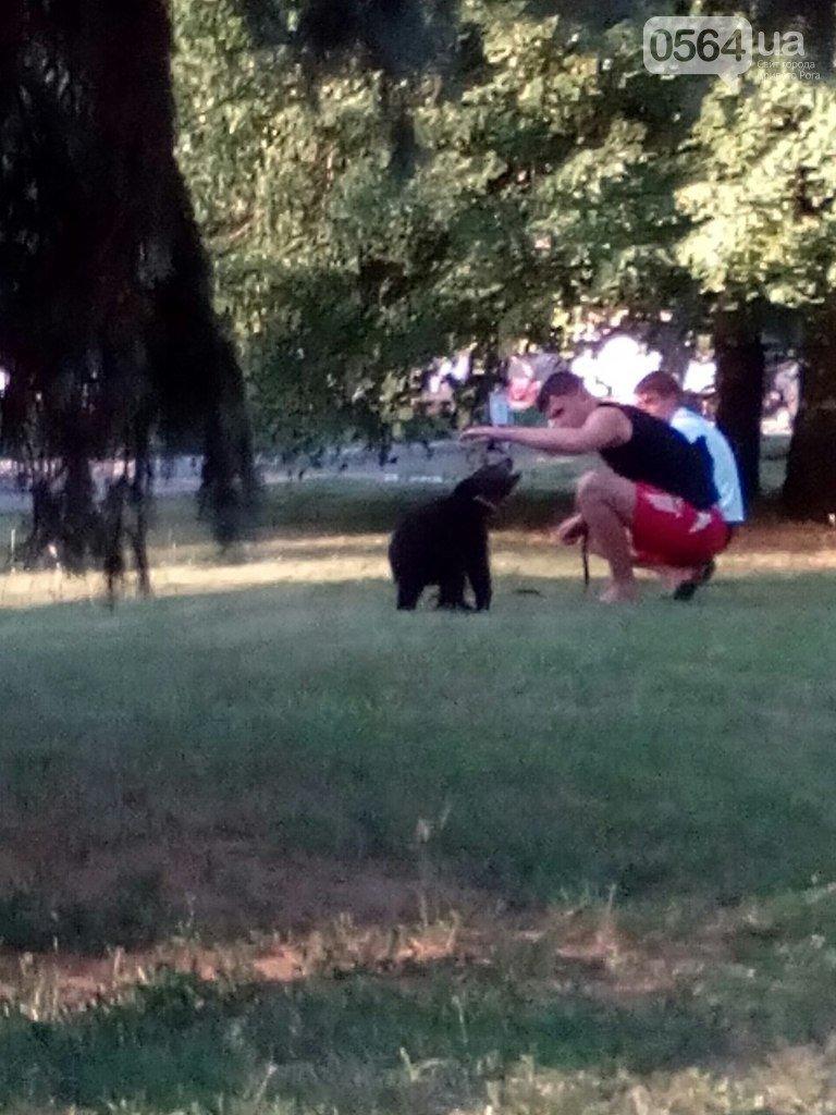 В Кривом Роге: почтили память погибших в Ил-76, провели «ZdravoFest», обнаружили медведя в парке, (фото) - фото 2
