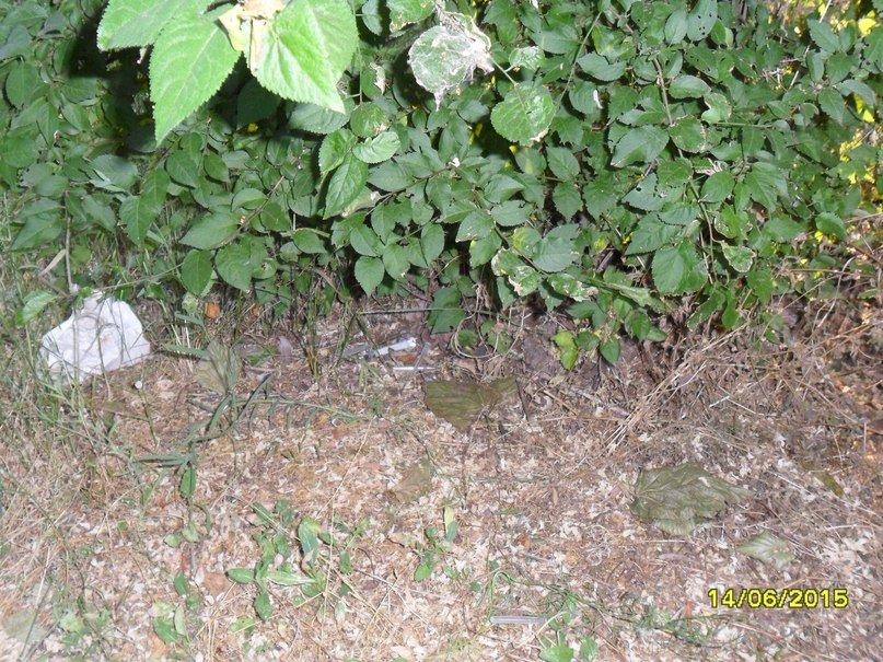 Маленькие криворожане в парке Юбилейный вместо цветов находят шприцы (ФОТО) (фото) - фото 1