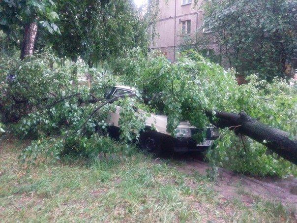 Фотофакт: в воскресенье Гомель «накрыло» дождем → http://odsgomel.org/rus/news/gomel/57315/ (фото) - фото 39