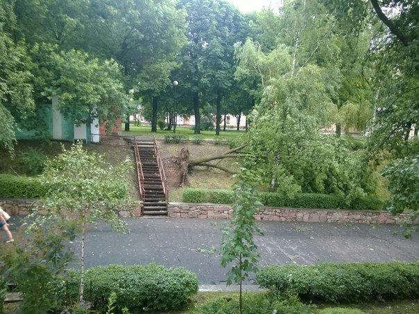 Фотофакт: в воскресенье Гомель «накрыло» дождем → http://odsgomel.org/rus/news/gomel/57315/ (фото) - фото 18