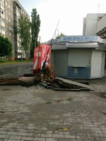 Фотофакт: в воскресенье Гомель «накрыло» дождем → http://odsgomel.org/rus/news/gomel/57315/ (фото) - фото 38