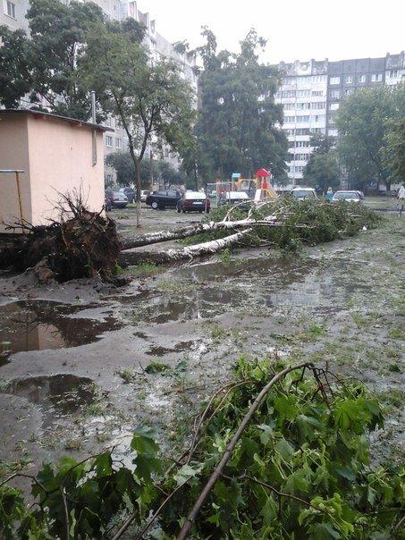 Фотофакт: в воскресенье Гомель «накрыло» дождем → http://odsgomel.org/rus/news/gomel/57315/ (фото) - фото 33