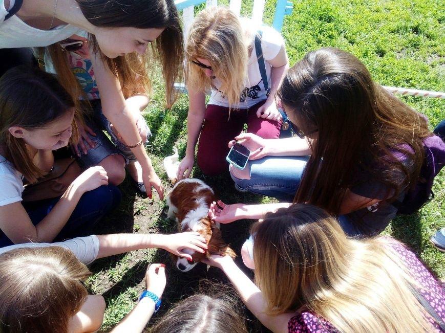 СНАУ запрошує школярів разом провести літо (ФОТО) (фото) - фото 1