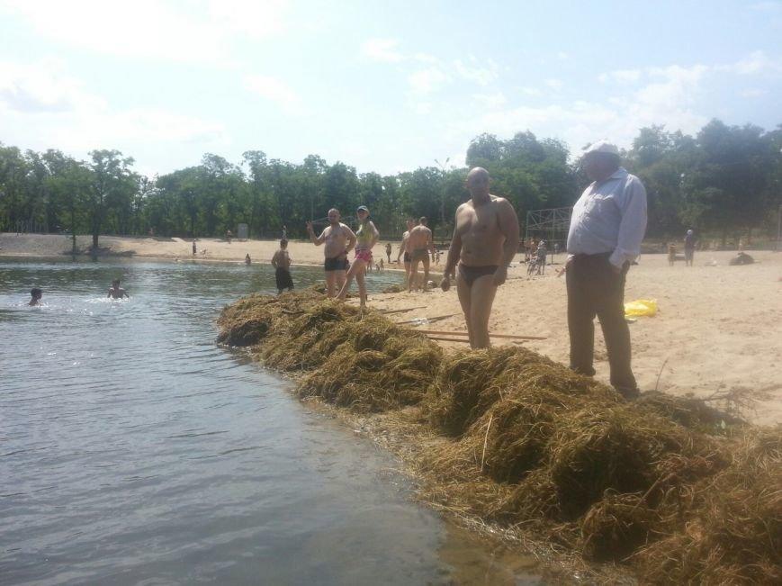 Криворожские активисты очистили дно реки и пребрежную зону на пляже в Терновском районе (ФОТО) (фото) - фото 1