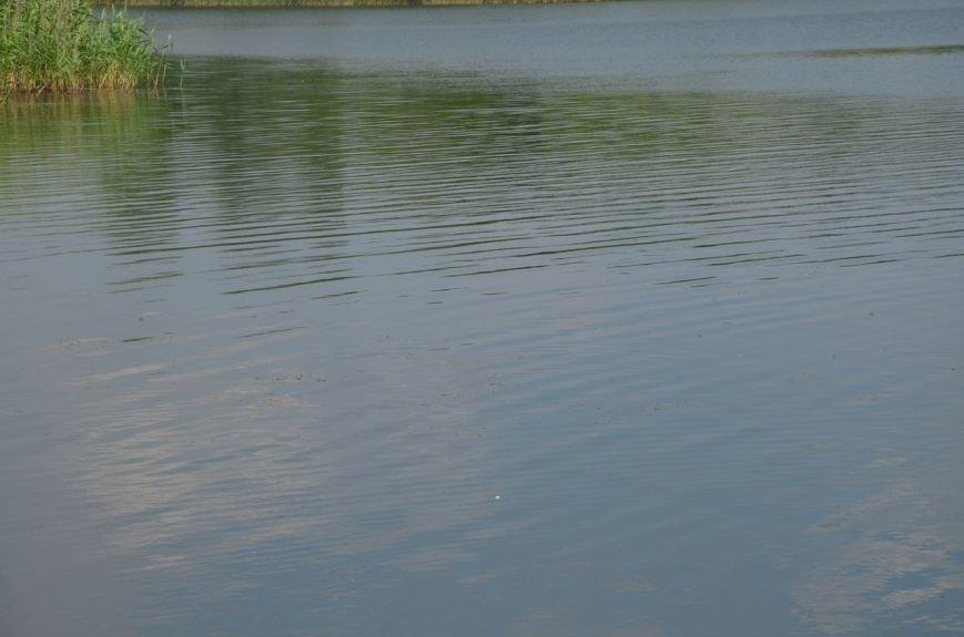 Криворожские активисты очистили дно реки и прибрежную зону на пляже в Терновском районе (ФОТО) (фото) - фото 4