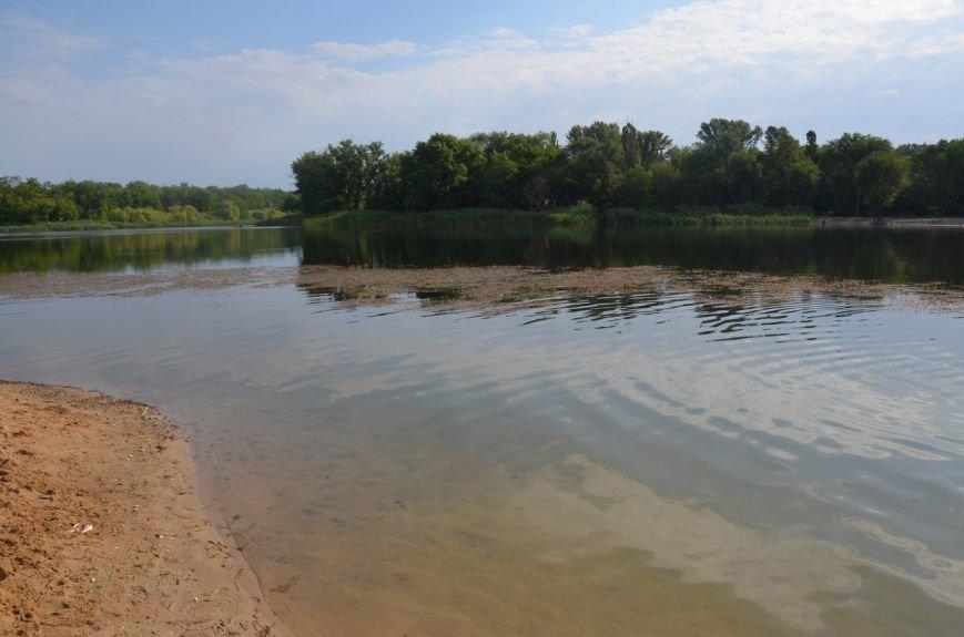 Криворожские активисты очистили дно реки и прибрежную зону на пляже в Терновском районе (ФОТО) (фото) - фото 1