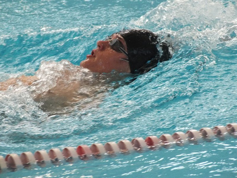 В Лабинске прошли соревнования по плаванию. (фото) - фото 1