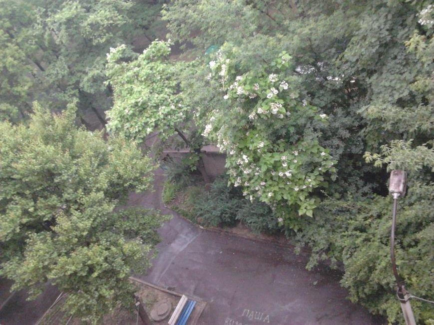 После изнуряющей жары Кривбасс накрыло полосой ливня (ФОТО) (фото) - фото 5