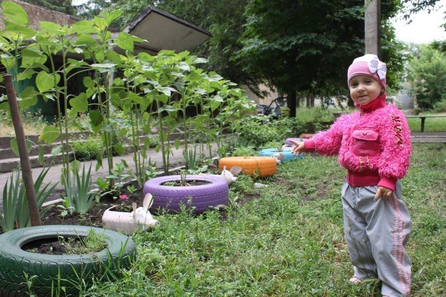 В Кривом Роге «при поддержке» молодых мамочек появилась детская площадка (ФОТО), фото-2